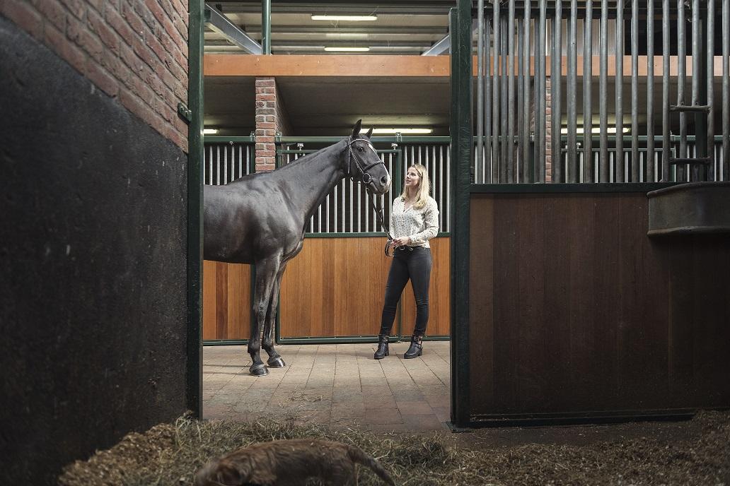 Paardentrainster met paard