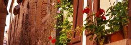 Vermogensmonitor | Frankrijk populair voor tweede huis
